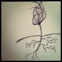 #4 Seedlings