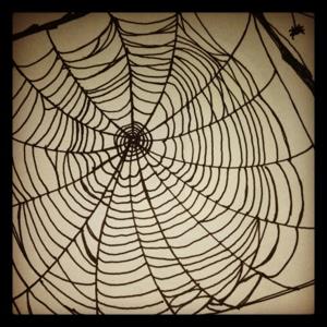 #12 Web