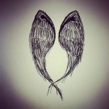 #18 Wings 3