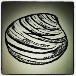 #35 Shell