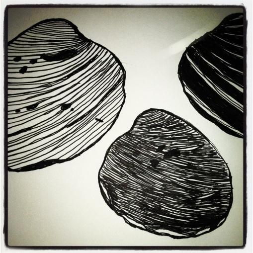 #56 Shells