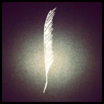 #59 Feather 2