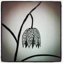 #71 Checkered Daffodil