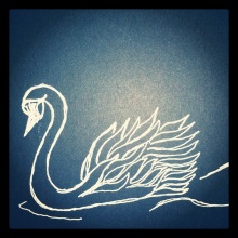 #80 Swan