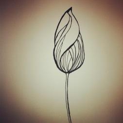#84 Tulip