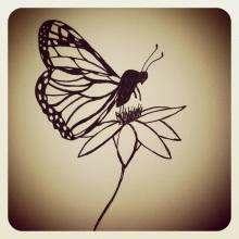 #90 Monarch