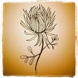 #91 Chrysanthemum