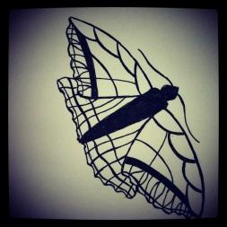 #101 Butterfly