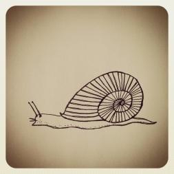 #118 Snail