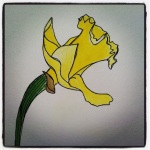 Narcissus - Watercolors #3