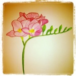 Freesia - Watercolor Pencils #9