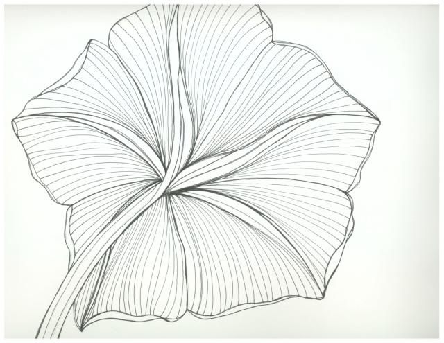 2 - Otherside of Moon Flower Bloom