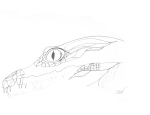 Beginnings of a Crocodile…Sketch and a little pen #74