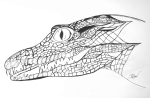 Crocodile – Pen and Ink (not quite finished) #77