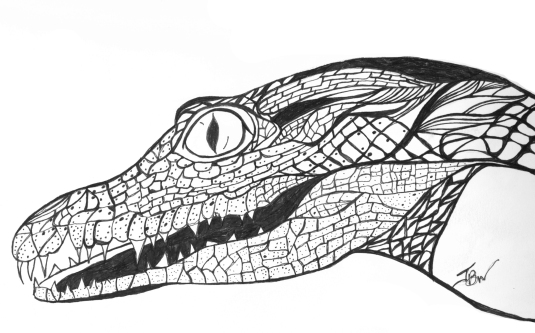 Crocodile – Pen and Ink #80
