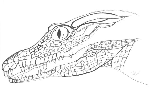 crocodile - a little further