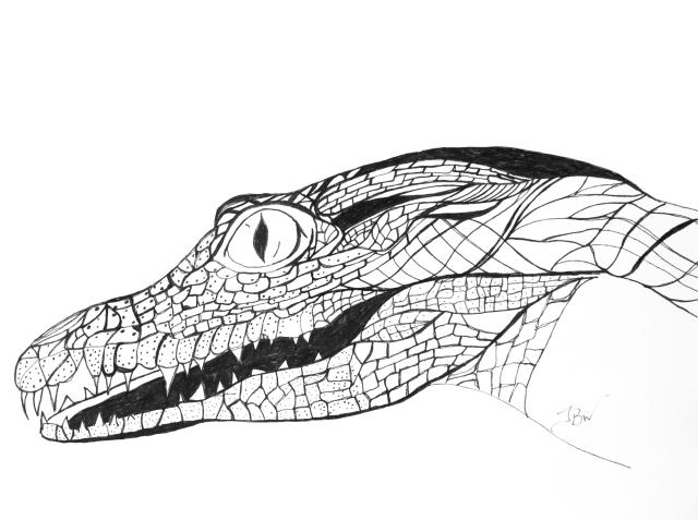 Crocodile - Again #89