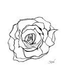 Modern Rose – Pen and Ink #72