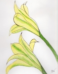 Night Blooming Gladiolus - Watercolor with Ink #58