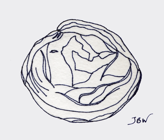 Bluish Seashell #106_edited-1
