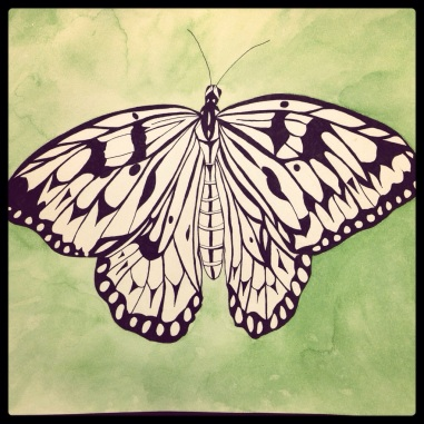 Tree Nymph Butterfly – Beginning Background #118 (Series 3)