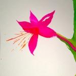 bloom (sneeze) #7
