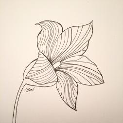 img_0669