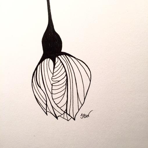 img_0738