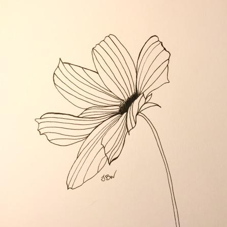 img_0854