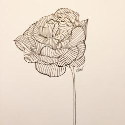 img_0861-1