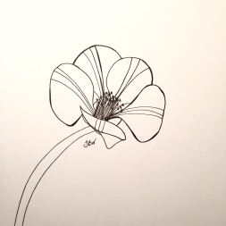 img_0890