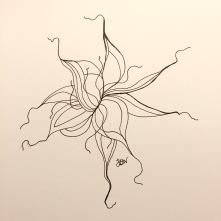 img_0926-1